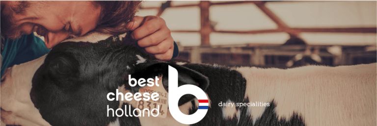 Best Cheese Holland Branding