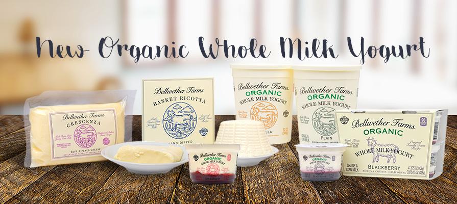 Bellwether Farms' Sales Manager Alexis Tejeda Talks New Organic Whole Milk Yogurt