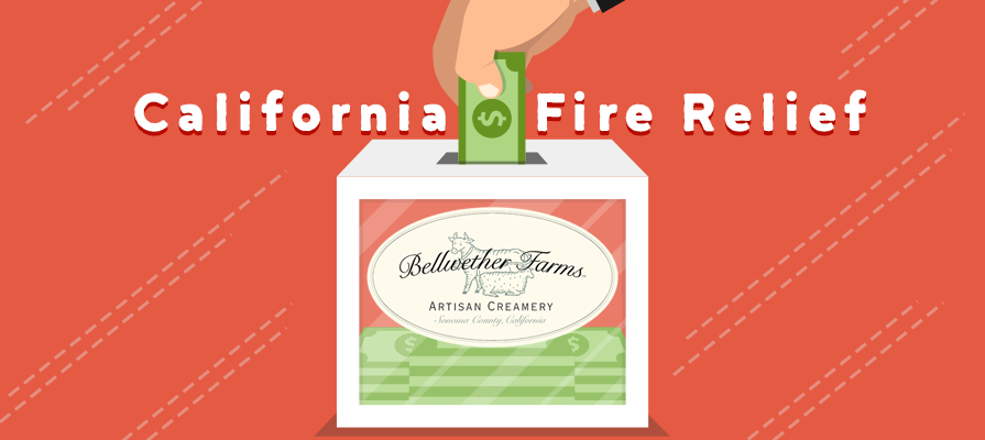Bellwether Farms Foundation Introduces New Grant For California Fire Relief