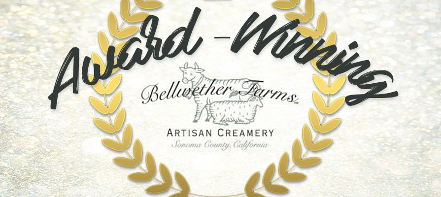 Bellwether Farms Introduces Organic Item, Launches Foundation, and More