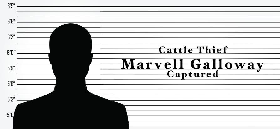 Texas Cattle Thief Marvell Galloway Captured in Ohio