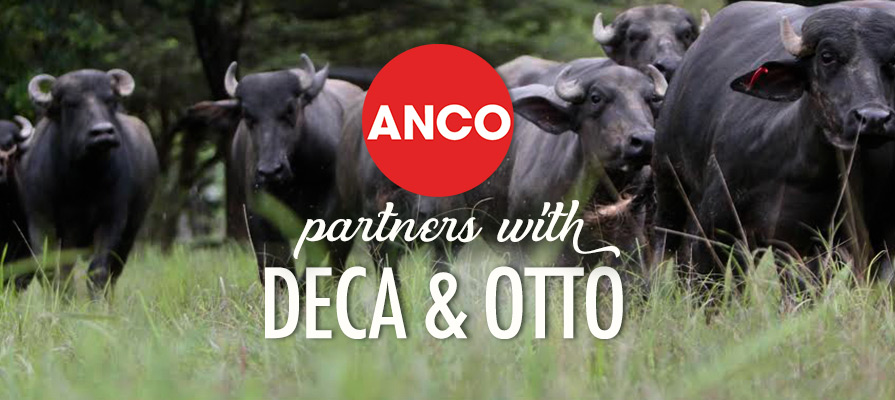 Deca & Otto Partners with ANCO; More Growth in Store