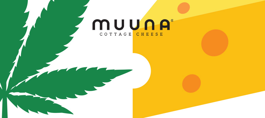 Muuna® Launches First Ever Cannabis Cottage Cheese