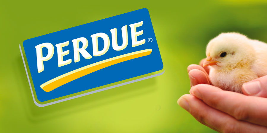 Perdue Publishes Powerful Precedent on Poultry Procurement