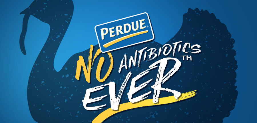 Perdue Foodservice Announces Entire Turkey Line Is Now Free From All Antibiotics Ever™