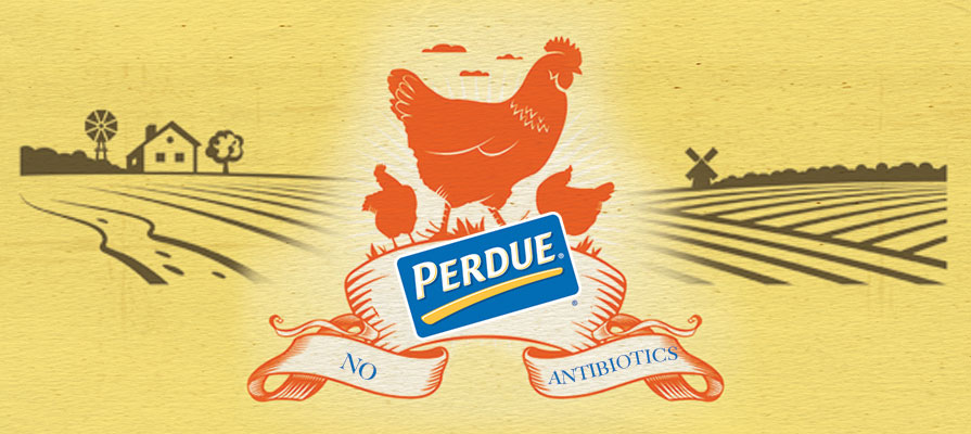 Perdue Farms Completes Final Step to Eradicate Antiobiotics in Chicken Production