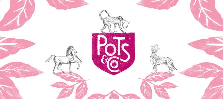 Pots & Co.'s Alex Chamberlain Discusses Company History, U.S. Expansion