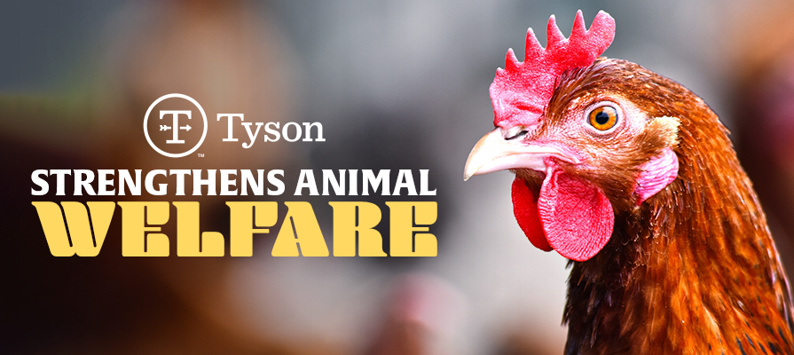 Tyson Foods Kicks Off Five Domains Model for Animal Welfare Assessment; Dr. Ken Opengart, Dr. Candace Croney, and Dr. Dorothy McKeegan Comment