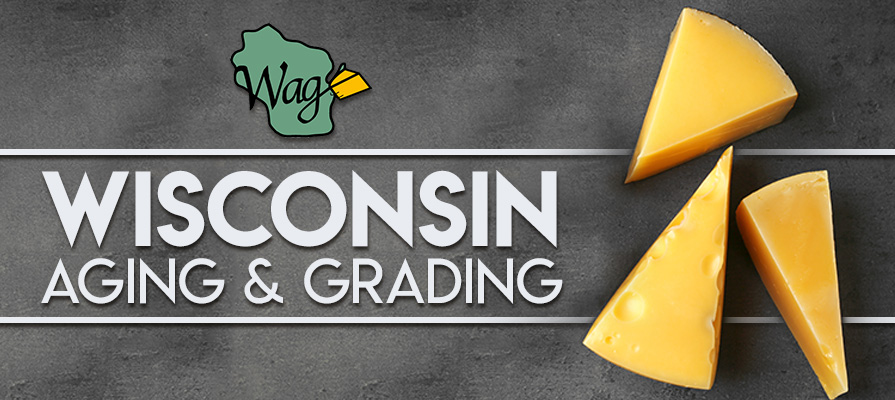 Wisconsin Aging and Grading's Kate Neumeier Clarke Discusses History, Future, and New Products