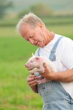 Paul Willis, Farmer and Founder, Niman Ranch