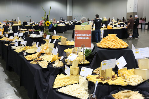 Cheeses on display