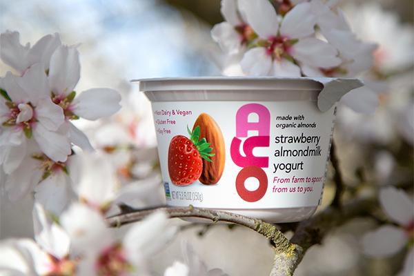 AYO Almondmilk Yogurt recently witnessed almost 400 percent growth in the yogurt category