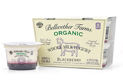 Bellwether Farms organic blackberry whole milk yogurt