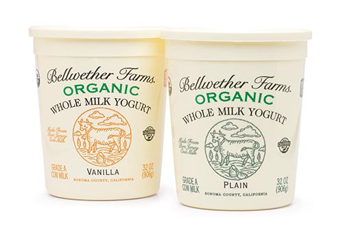 Bellwether Farms organic whole milk yogurt