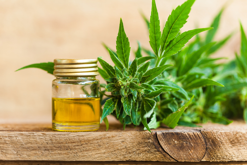 The high number of health benefits associated with CBD (including pain, anxiety, and seizure relief, as well as improved sleep) have consumers curious