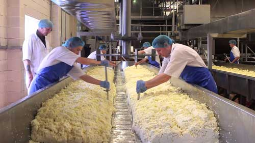The Wisconsin Cheese Makers Association (WCMA) is looking to recognize outstanding contributions to the dairy processing industry with one of several awards in leadership