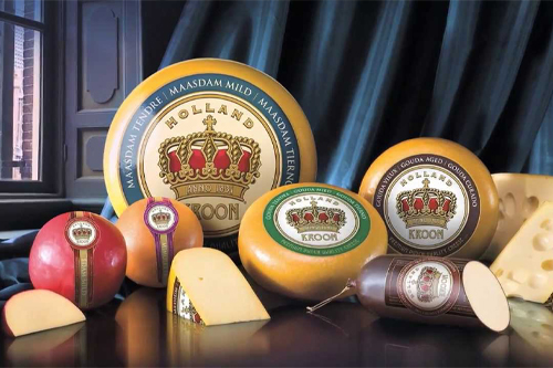 Jana Foods currently imports and markets FrieslandCampina's Dutch cheese in the United States market