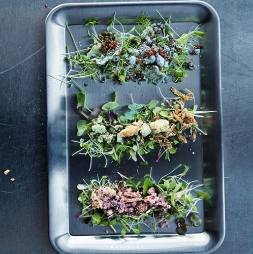 IKEA's Space10 Lokal Salad