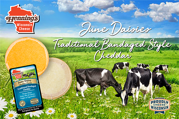 June Daisies is a highly-sought-after, award-winning cheese that Henning's Wisconsin Cheese is bringing back to the market just in time for summer