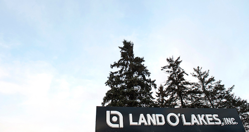 Land O' Lakes reported that every one of its business units performed better this quarter than in the same quarter in 2019