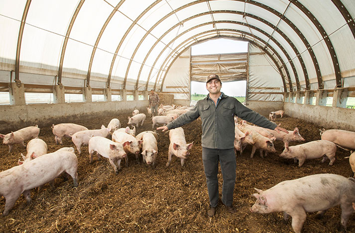 Charles Thieriot with Llano Seco pigs