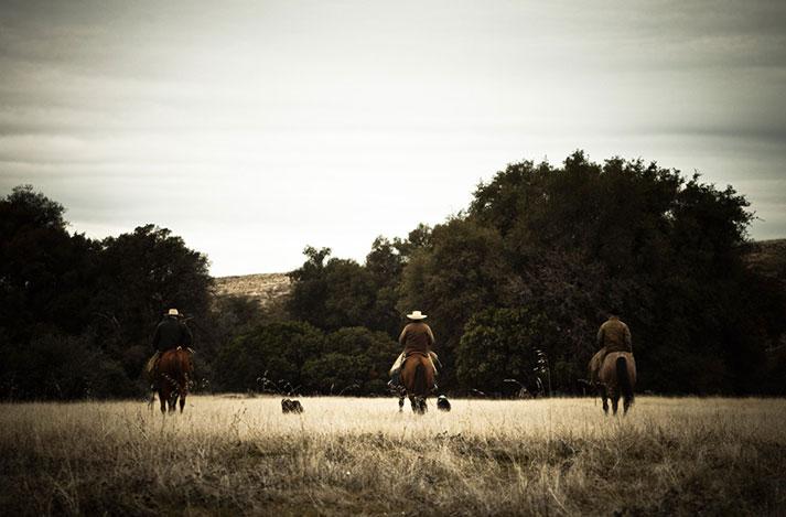 Rancho Llano Seco (Photo Credit: Olivia Tincani)