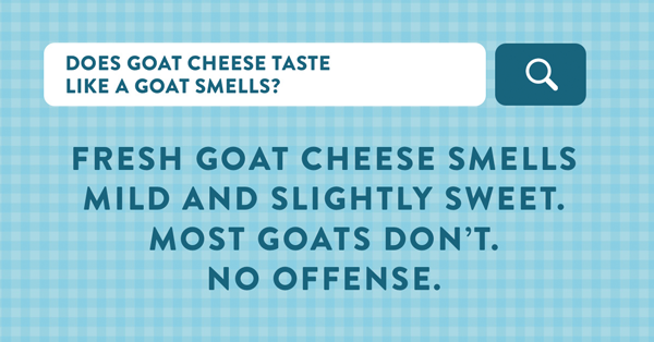 Montchevre's new branding campaign helps consumers understand the greatness and versatility of goat cheese