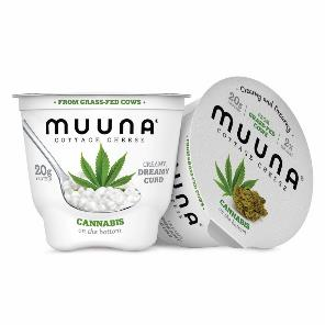 Muuna Cannabis Cottage Cheese launches in select retailers across the country
