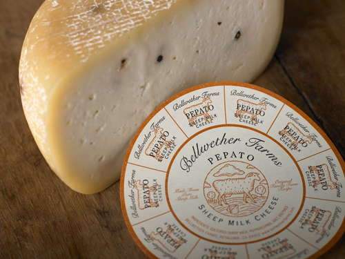 Bellwether Farms' Pepato, Basket Ricotta, and Blackstone combine 'old world' traditions with 'new world' creativity