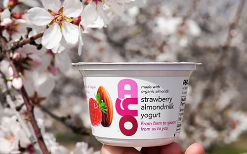 AYO Almondmilk Yogurt uses the Billings family's organic almonds to create its non-GMO certified collection of naturally-flavored AYO Almond Yogurt