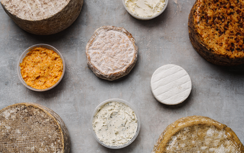 The new state-of-the-art space has customized environmental controls to maintain the correct temperature, humidity, and air flow in the cheese aging rooms
