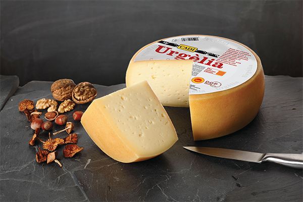 To bolster the category, the CADI Urgèlia brought home the Gold Award in the Best Cow's Milk Cheese category as part of the Specialty Food Association's (SFA) 2020 sofi™ Awards