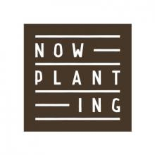 Now Planting