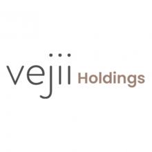 Vejii Holdings